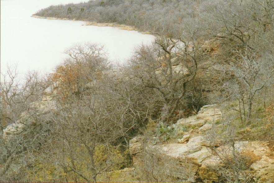 a trip to Mineral Wells with SMU rock climbing club