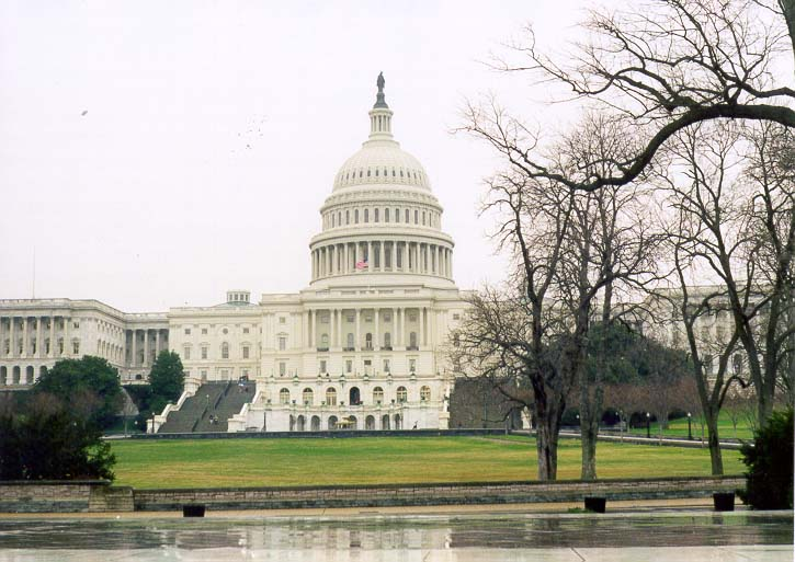 View of U.S. Capitol from Reflecting Pool. Washington DC