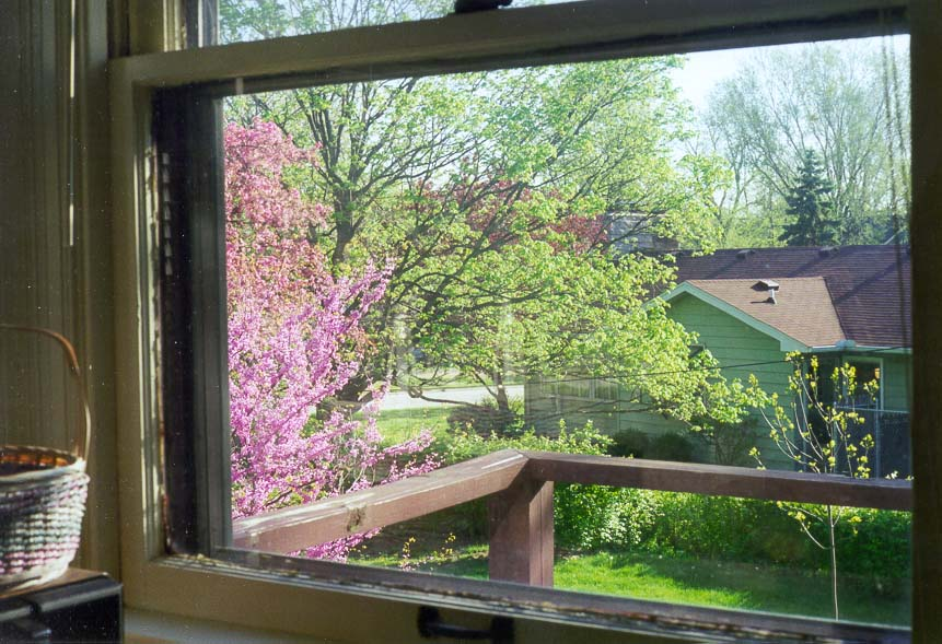 A porch and a backyard with a redbud in bloom...the house in West Lafayette, Indiana