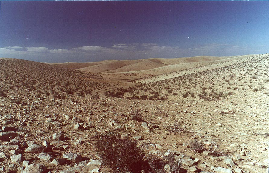 Negev Desert on hills opposite to Golda Meir Park. The Middle East