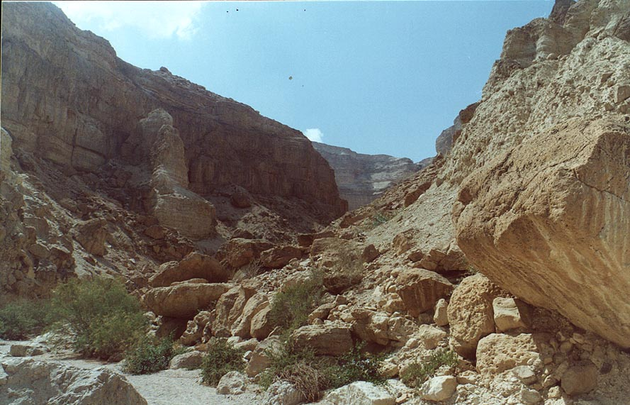 Canyon of Ein Bokek Creek. The Middle East