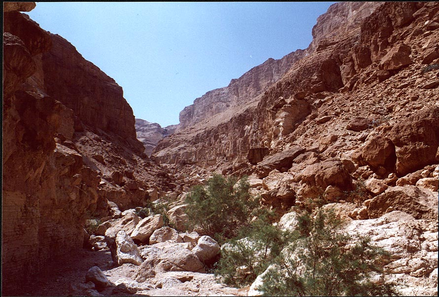 Canyon of Ein Bokek Creek above the spring. The Middle East