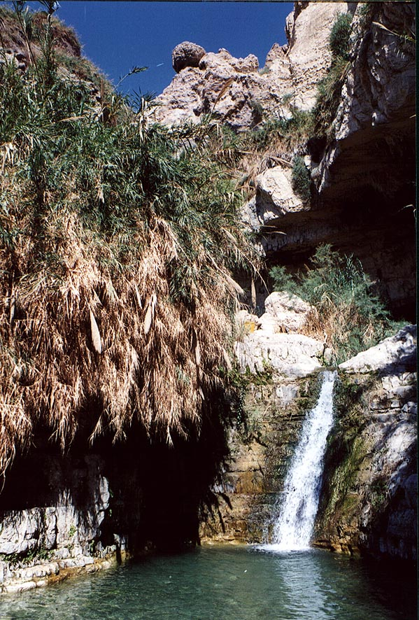 Shulamit Fall and a cave on David Creek in Ein Gedi. The Middle East