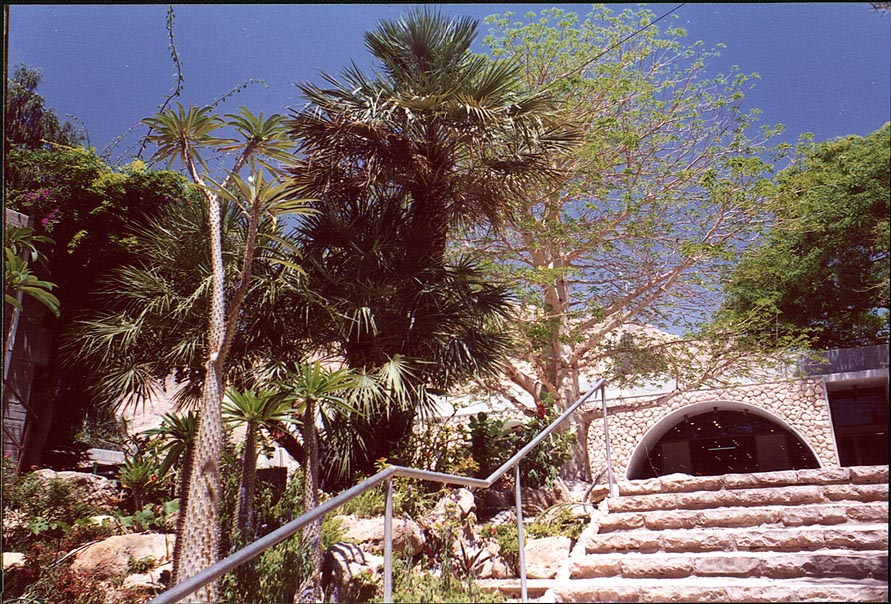 A building for visitors in Kibbutz Ein Gedi. The Middle East
