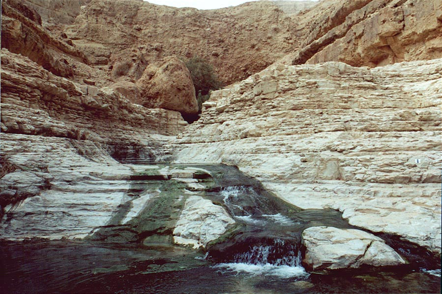 Upper Pools of Nahal Arugot. Ein Gedi, the Middle East