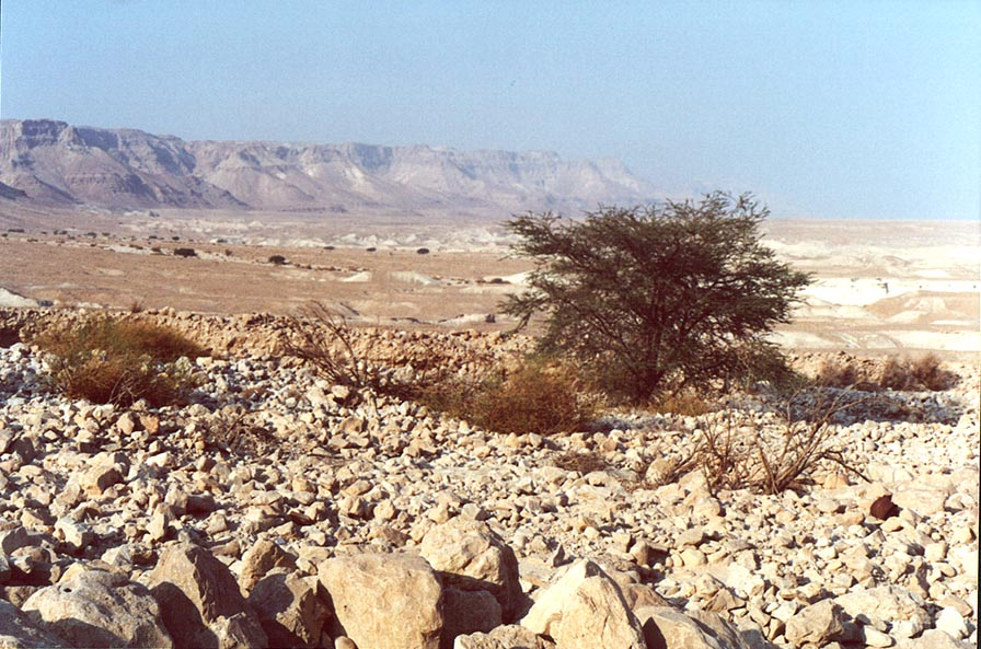Dead Sea banks north from Masada. The Middle East
