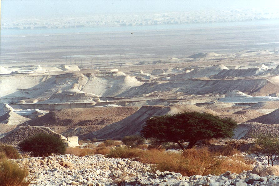 Dry wadi and Dead Sea, view from a trail north from Masada. The Middle East