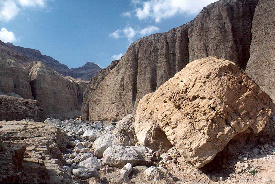 Limestone along Nahal Tseelim River, 2 miles north from Masada. The Middle East
