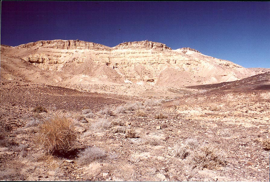 A dry river on a bottom of Ramon Crater. Mitzpe...the rim to the north. The Middle East