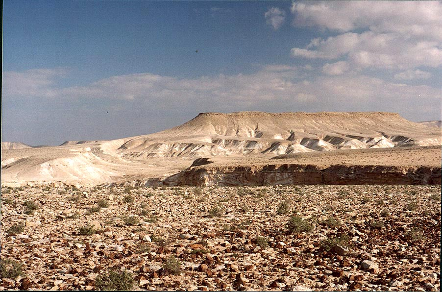 A desert plateau covered by flint stones (view to...College at Sde Boker. The Middle East