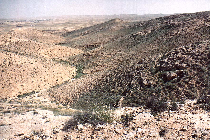 A tributary of Nahal Revivim descending from a...Yeroham reservoir. The Middle East