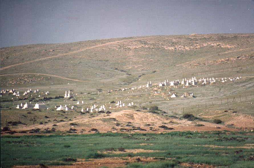 Moslem cemetery north-east from Dimona, view from Rd. 25. The Middle East