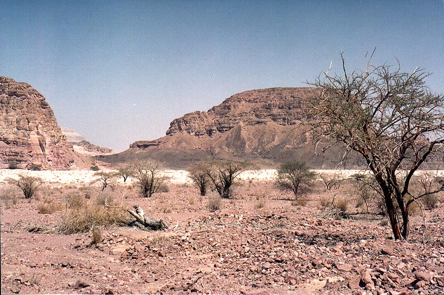 View of Sasgon Hill along Timna Stream north-east from Timna Park gate. The Middle East