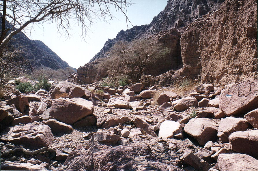 Alakhson creek in Timna Mountains. The Middle East