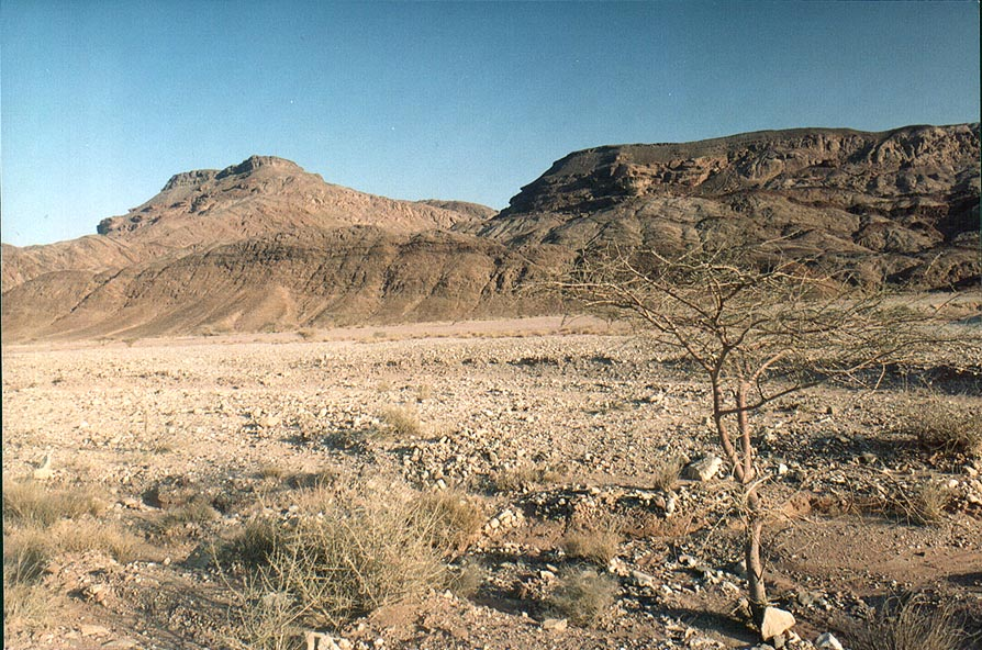 View of Timna valley from northern road through Timna Park. The Middle East