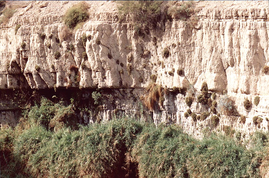 Cliffs above Shulamit Fall. Ein Gedi, the Middle East