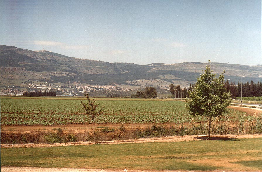 Qiryat Shmona in Galilee, view from Rd. 918. The Middle East