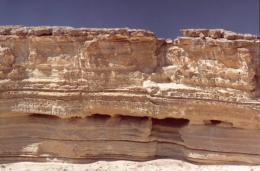Upper side walls of the horseshoe formation of...east from Sde Boker. The Middle East