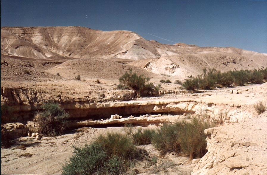 Shallow parts of Nahal Bokek River in Judean...west from Ein Bokek. The Middle East