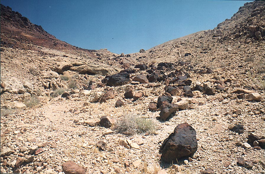 Stones near a trail to Ramon's Tooth (black hill...from Mitzpe Ramon. The Middle East