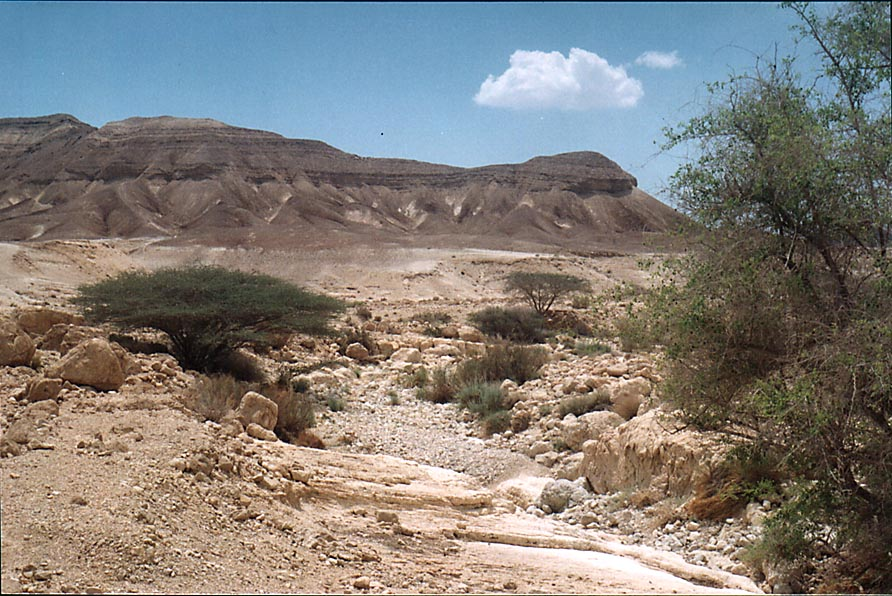 Descent to Dead Sea along Nahal Peres River and a...east from Dimona. The Middle East