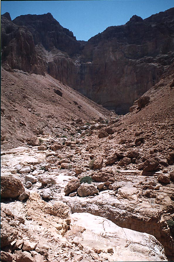 Northern tributary of Tseelim River, view from Roman road from Masada. The Middle East