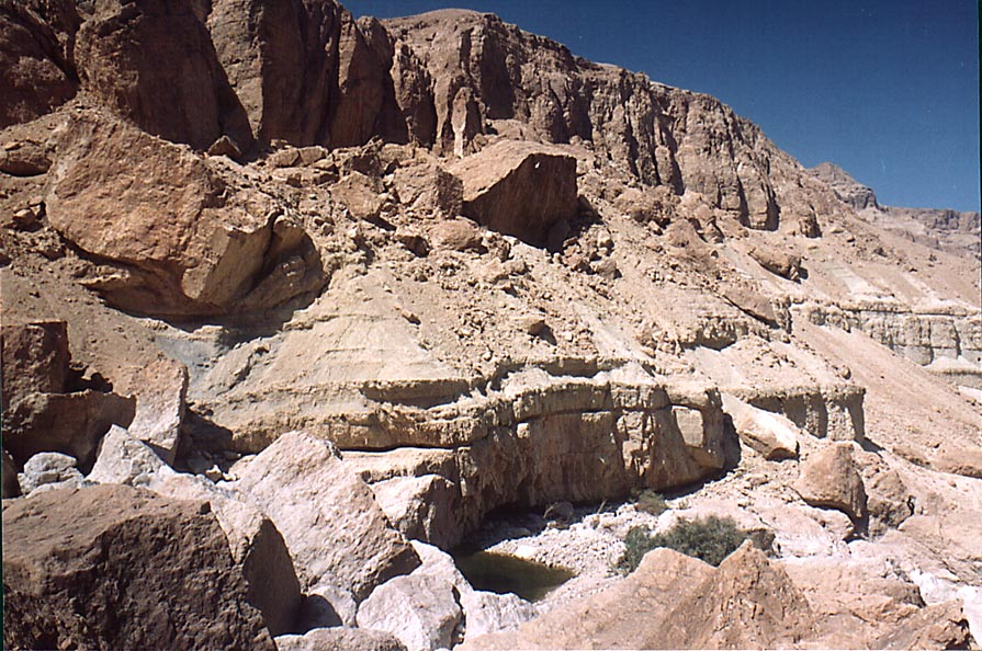 Rocks behind En Namer spring in Tseelim Canyon 3...west from Masada. The Middle East