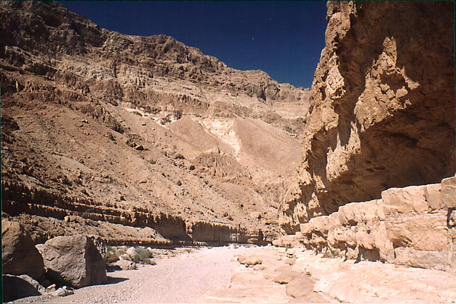 Riverbed and canyon (resembling Ein Avdat) of...north from Masada. The Middle East