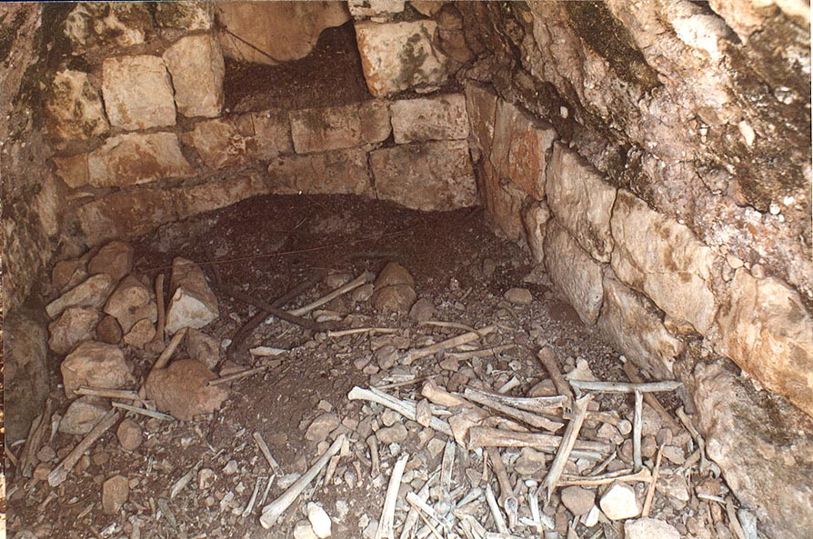 Bones inside one of columbarium caves in Bet Atab...from Beit Shemesh. The Middle East