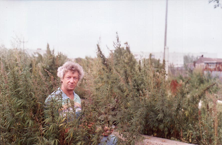 A.S. among marijuana weeds in Krasnogorsk, near Cheliabinsk, south Ural. Russia