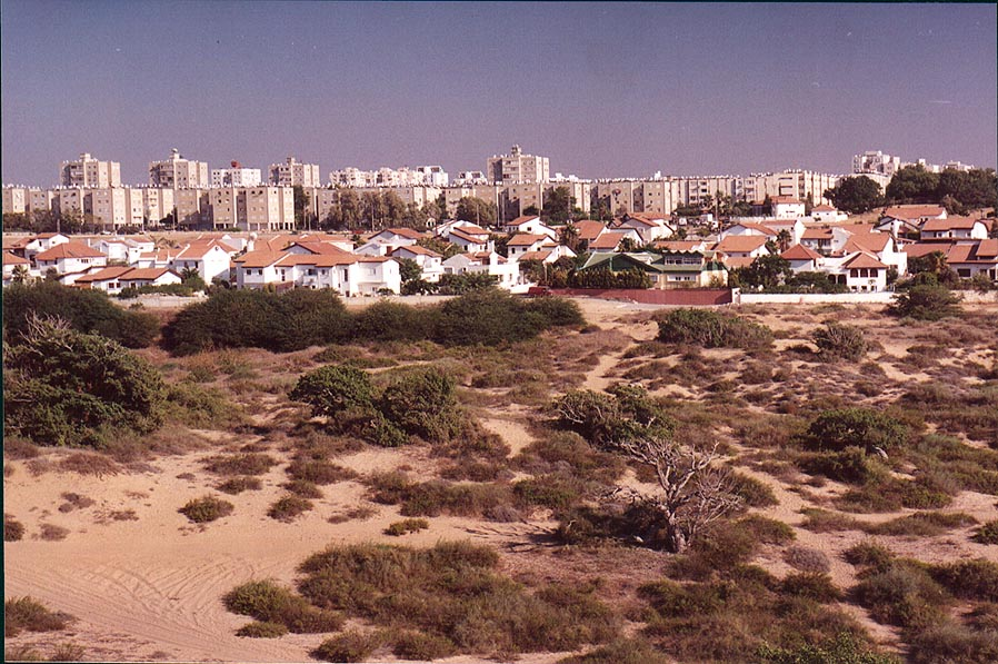 View of southern Ashkelon from an ancient wall protruding from the sands. The Middle East
