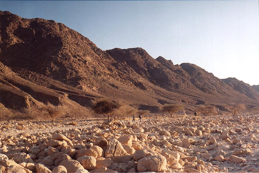 Roded creek 3 miles north-west from Eilat. The Middle East