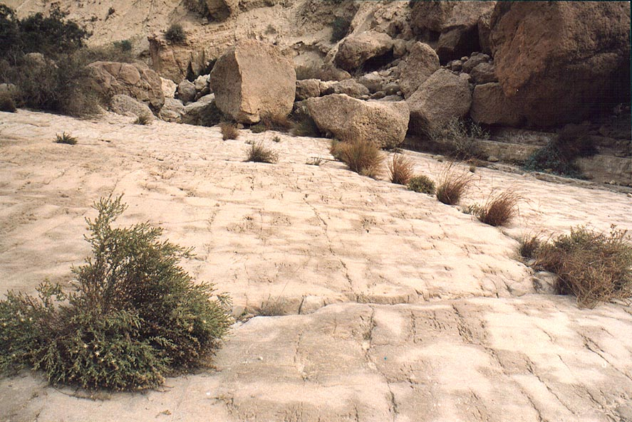 Stone pavement of Tsafit Creek 10 miles west from Dimona. The Middle East