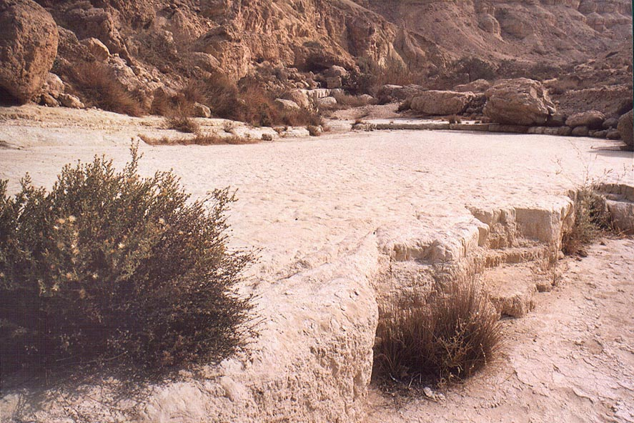 Limestone of Tsafit Creek 10 miles west from Dimona. The Middle East