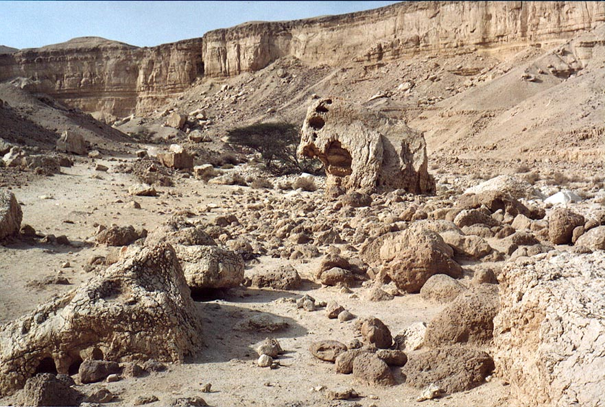 Limestones near narrowing of lower canyon of...from Arava junction. The Middle East