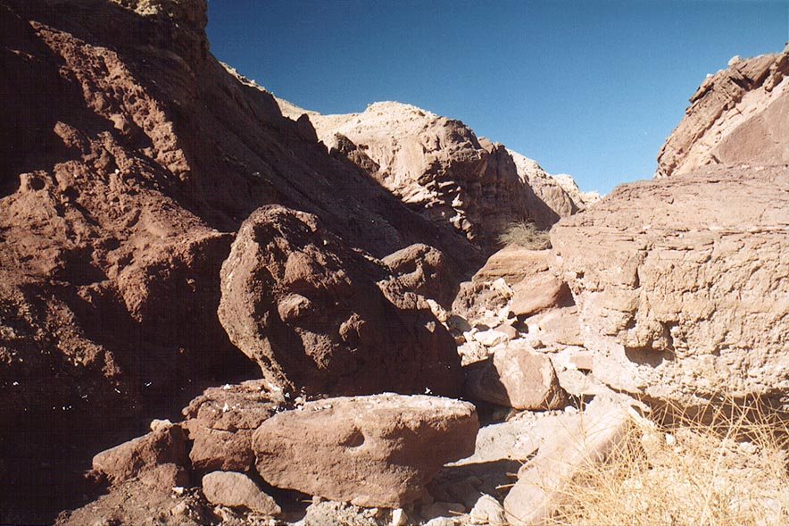 Descending from Roded Valley to Netafim Creek, 4...north-west from Eilat. The Middle East