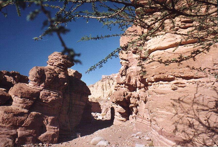 Sandstone cliffs of Nahal Gishron creek, a trail...miles west from Eilat. The Middle East