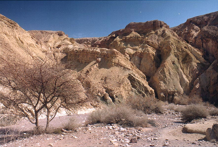 Nahal Shani river below Red canyon, 9 miles north from Eilat. The Middle East