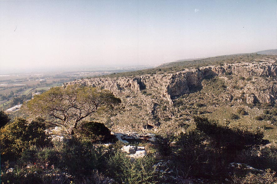 View of a northern slope of Nahal Oren river from...Ridge on Mount Carmel. The Middle East
