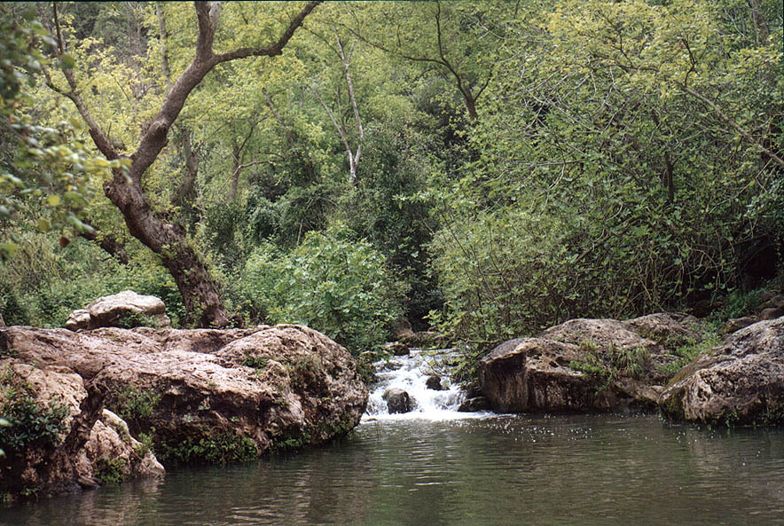 Nahal Keziv river below Ein Tamir spring, north from Mi'ilia. Galilee, the Middle East