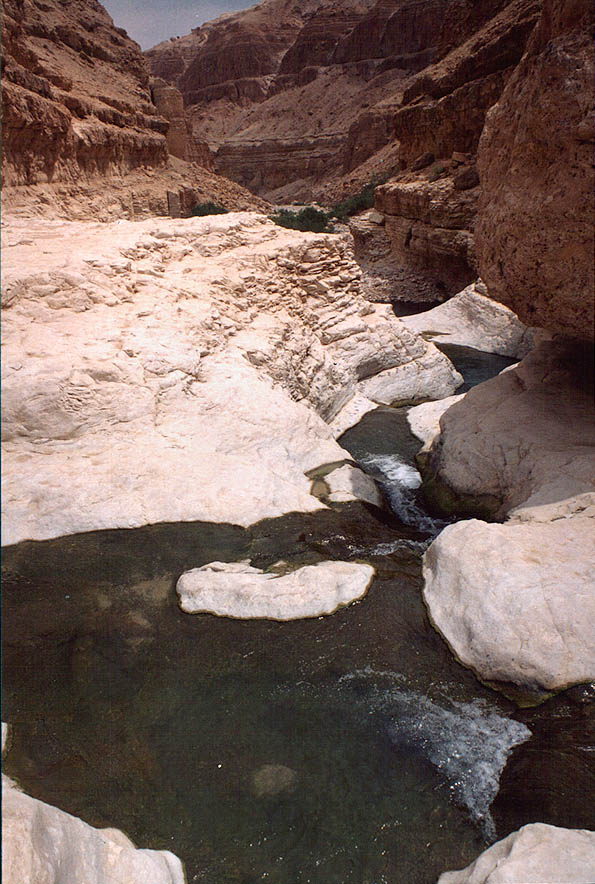 Upper pools of Nahal Arugot river in Ein Gedi park. The Middle East