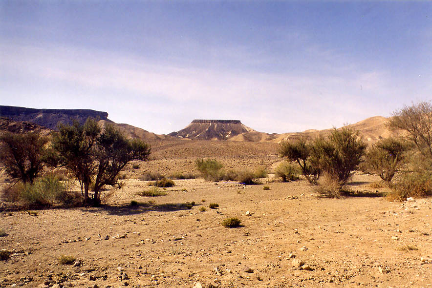 Nahal Gevanimat wadi in Ramon Crater, with Mount Marpeq at horizon. The Middle East