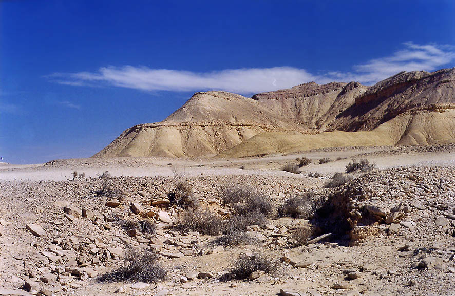 Desert plateau near Berekh ascent west from Timna...north from Eilat. The Middle East
