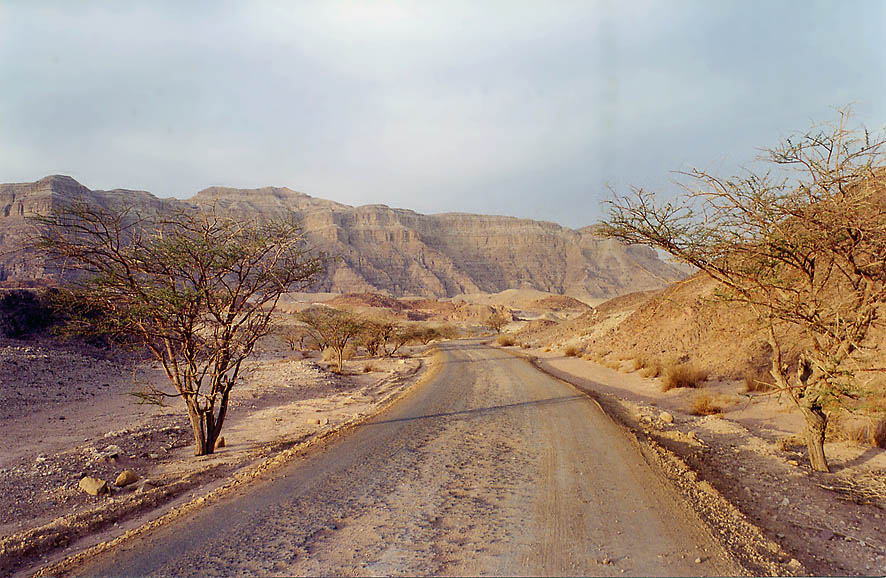 A road to the Mushroom in Timna Park, 13 miles north from Eilat. The Middle East