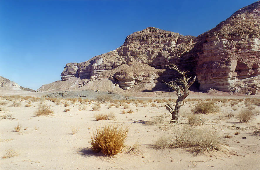 Sandy area in western Timna Park, 13 miles north from Eilat. The Middle East