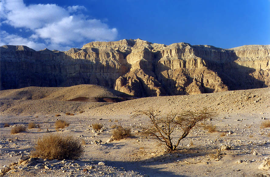 Timna Stream and Cliffs, 13 miles north from...minutes before sunset. The Middle East