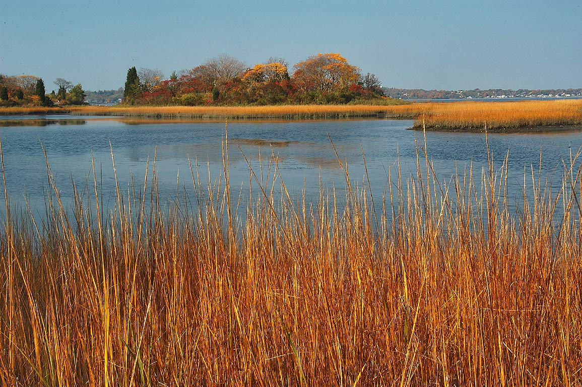 Emilie Rueker Wildlife Refuge in Tiverton. Rhode Island