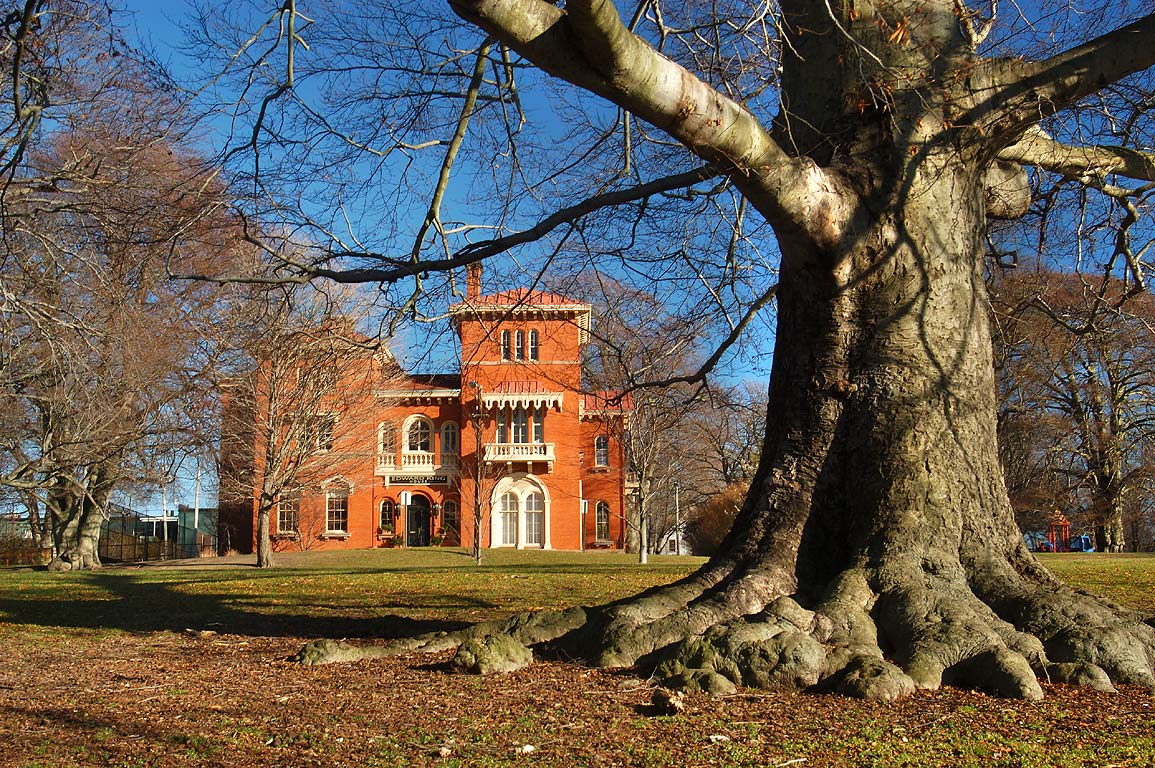 Edward King House and a beech tree in Aquidneck...near Bowery St.. Newport, Rhode Island