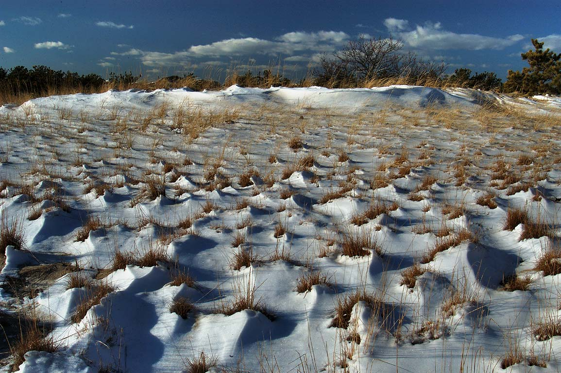Dunes with wind blown snow near Provincelands Visitor Center in Cape Cod. Massachusetts