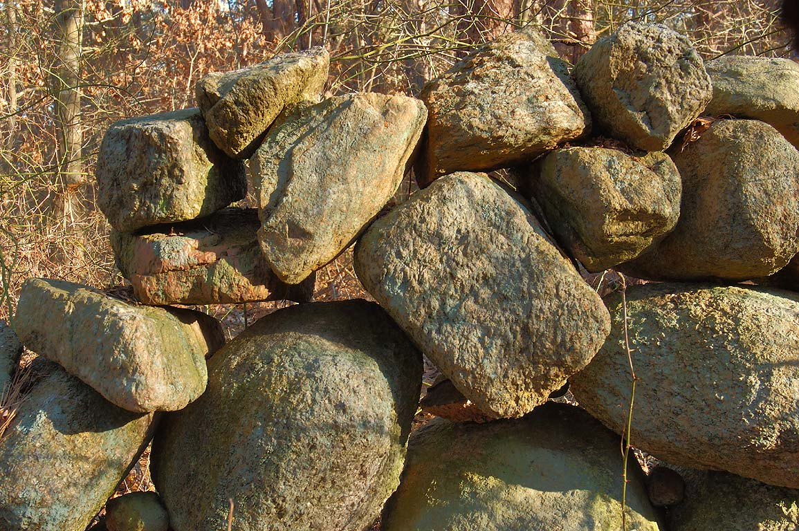 Abandoned stone wall in a forest in Bridge Creek...in Cape Cod. Barnstable, Massachusetts